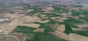 Altınyayla'da arazi toplulaştırma çalışmaları Sivas'ın Altınyayla ilçesinde bulunan bazı mahalleler 'Toplulaştırma Projesi' kapsamında yüzde 31 oranında toplulaştırıldı
