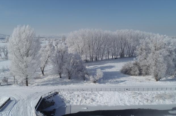 Sivas'ta görsel şölen, kırağı kartpostallık görüntüler oluşturdu Sivas'ta dondurucu soğuğun etkisiyle oluşan kırağı kartpostallık görüntüler oluşturdu. Masalsı güzellik havadan da görüntülendi