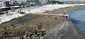Dalgaların kıyıya attığı salyangozlar kadınlara ekmek kapısı oldu Samsun'daki fırtına ev kadınlarına yaradı
