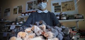 28 kadın bir araya geldi, yöresel ürünlerle pazara girdi Elazığ'dın Ağın ilçesinde bir araya gelen kadınların kurduğu kooperatif aracılığıyla üretilen ürünler başta İstanbul olmak üzere Türkiye'nin 4 bir yerine satılmaya başladı