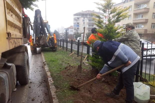 Samsun-Sinop yolunda refüj düzenleme çalışması