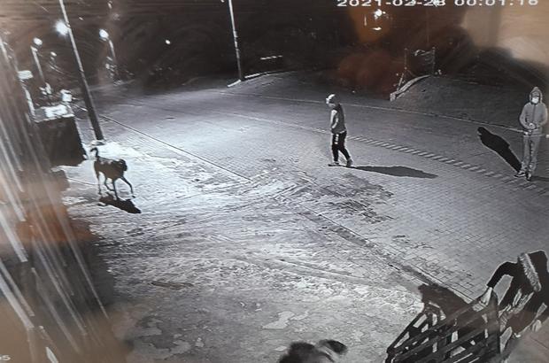 Köpeğin çalınma anı saniye saniye kameraya yansıdı Sahibi köpeğin bulunmasını istiyor