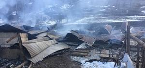 Ahırda çıkan yangında 18 büyükbaş hayvan telef oldu Sivas'ın Koyulhisar ilçesinde bir ahırda meydana gelen yangında 18 büyükbaş hayvan telef oldu