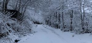 Ordu'da baharın ilk gününde kar sürprizi