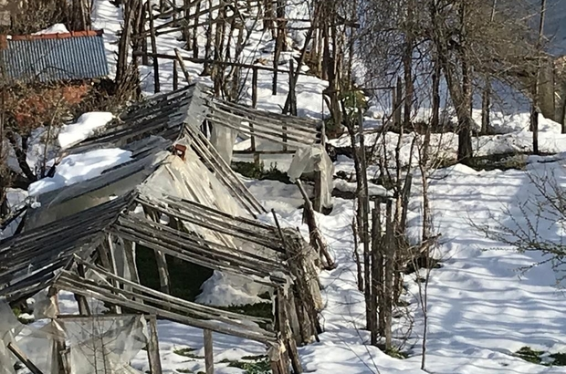2 metrelik kar 150 serayı yerle bir etti Kastamonu'da etkili olan yoğun kar yağışı, birçok serayı kullanılamaz hale getirdi