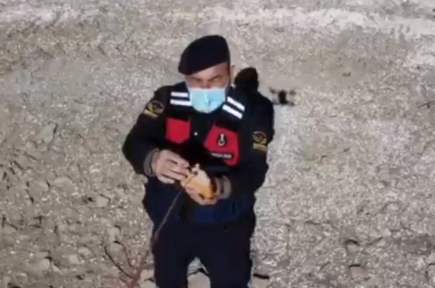 Jandarma yaban keçilerine saman, balıklara drone ile ekmek bıraktı