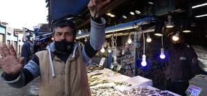 Yerli hamsi bu yıl ilk kez tezgâhlarda yerini aldı ama fiyatı cep yakıyor Trabzon açıklarında avlanan hamsi kilosu 30-35 TL'den satılıyor