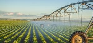 """Sürdürülebilir tarım, pandemide kilit rol oynadı Sanayiden tarıma, ulaştırmadan enerjiye """"karbonsuz bir ekonomi"""" dönemi Tarladan çatala kadar kontrollü gıda üretimi"""