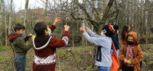 Minik öğrencilerin elmaları kuşlara hayat oluyor