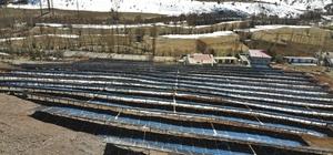 Doğu Karadeniz'in en büyük güneş enerji santrali Giresun'da hizmete girdi Büyüklüğü ve ürettiği enerji bakımından Doğu Karadeniz'in ilk ve tek güneş enerji sistemi yıllık 4 milyon kw/h enerji üretecek