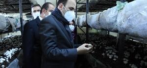 """Başkan Altay: """"Akören'i mantarda ve susamda markalaştırmak için çalışıyoruz"""""""