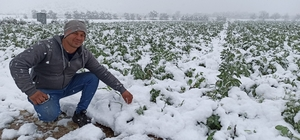 Ödemiş Ovası'na kar yağdı, bakla ve bezelye üreticileri tedirgin