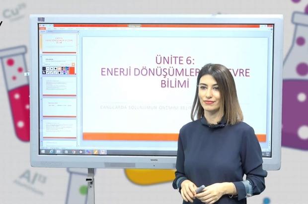 LGS adaylarına online takviye dersler
