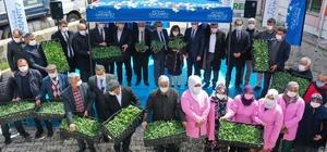 Büyükşehir'den Nurdağı çiftçisine dev destek 4 milyon 300 bin adet biber fidesi çiftçiye ulaştı