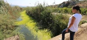 """""""Tüm havzamıza hayat veren Küçük Menderes Nehrini kurtarmak zorundayız"""" Başkan Sengel, Soyer'in atık su arıtma tesisi açıklamalarını değerlendirdi"""