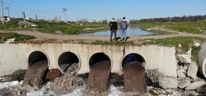 (Özel) Nehir değil zehir Çorlu Deresi zehir akıyor Çorlu Deresi simsiyah akmaya devam ediyor