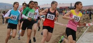 Atletizm kros ligi yarı final yarışları Sivas'ta yapıldı