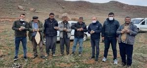 Sivas'ta 248 keklik markalandı Sivas'ta DKMP ekipleri ve 48 Avcının katılımıyla yapılan çalışmada 248 adet keklik markalandı
