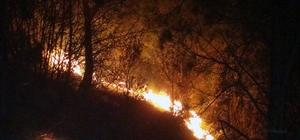 Orman yangınları erken başladı Muğla'da Menteşe ve Kavaklıdere ilçelerinde akşam saatlerinde başlayan orman yangınlarından Kavaklıdere yangını kontrol altına alınırken, Menteşe Yılanlı bölgesi Çamoluk mahallesindeki yangının kontrol altına alınması çalışması sürüyor.