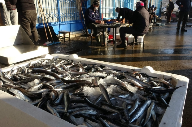 """Trabzon'da son 7 yıldaki balık miktarı 40 milyon kilograma yaklaştı Trabzon Toptancı Balık Hali'ne son 7 yılda 38 milyon kilogramın üzerinde balık gelirken, bunun 26 milyon kilogramdan fazlasını hamsi oluşturdu. Denizer Balıkçılık sahibi Recep Denizer """"Bu miktar inanılmaz çok az"""""""