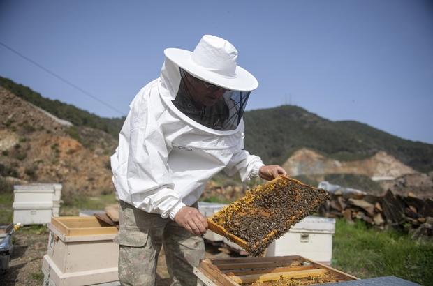 Mersin'de 708 arı yetiştiricisine belediyeden ekipman desteği Mersin Büyükşehir Belediyesince, kentin 13 ilçesinde toplam 708 arı üreticisine alet ve  ekipman desteği verildi