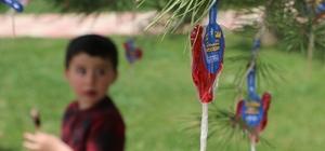 Çocuklara ağaçta şeker sürprizi Minikler şeker alabilmek için birbiriyle yarıştı Küçük başkan talimat verdi, Aziziye Belediye Başkanı yaptı