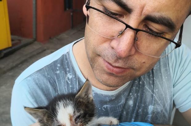 Sokakta kalan yavru kedilere emniyet müdürü sahip çıktı