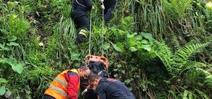 Kestiği ağacın altında kalan yaşlı adam hayatını kaybetti