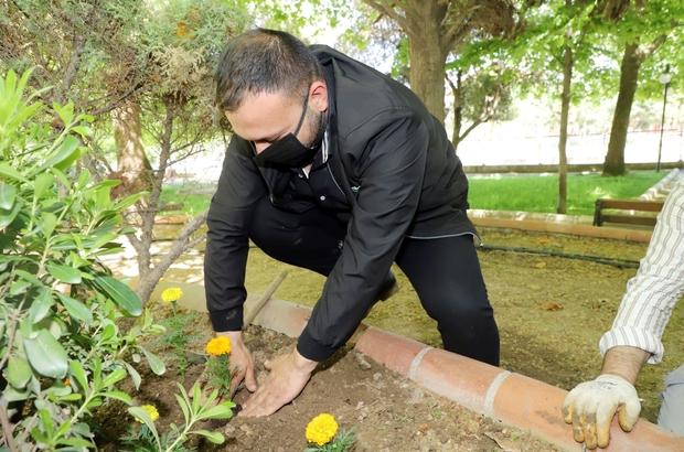 Turgutlu Belediyesinin ürettiği çiçekler toprakla buluşuyor