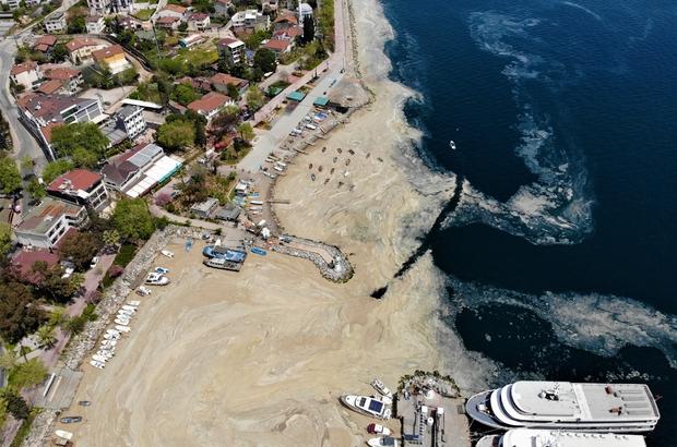 Deniz salyasını arındırmak için temizlik çalışması yapılıyor