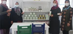Moringa bitkisi sayesinde iş kadını oldular Hindistan'dan getirdiler, Nurdağı'nda yetiştirip satıyorlar