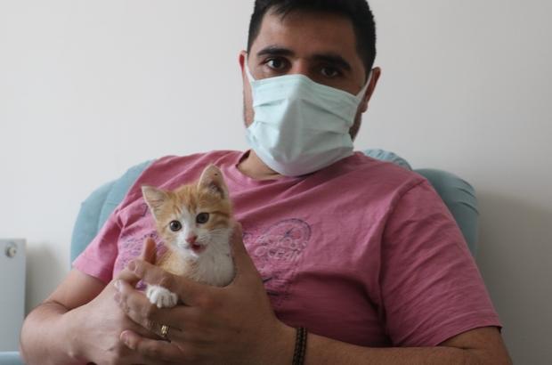 Herkesi seferber etmişti, şimdi sıcak yuvasında Sivas'ta otomobilin motor kısmına giren kedi saatler sonra dışarı çıktı, yaramaz kediyi otomobil sahibi evine aldı
