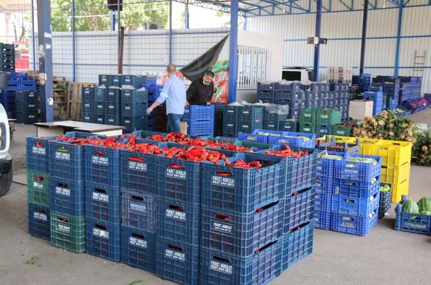 (ÖZEL) Antalya halinde semt pazarı hareketliliği başladı Hale gelen ürünler özenle paketlendi Paketlenen ürünler büyükşehirlere gitmek üzere kamyonlara yüklendi