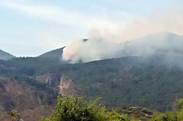 Ortaca'da orman yangınında 1 hektar yandı Ortaca ilçesi Kordonlar Mahallesi yakınında başlayan orman yangını ekiplerin havadan ve karadan müdahalesi ile 1 hektarlık alanda kontrol altına alındı.