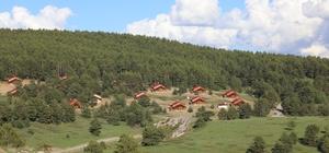Vali Makas, Dumanlı Tabiat Parkında incelemelerde bulundu