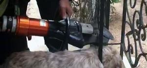 Korkuluklara sıkışan köpek kurtarıldı