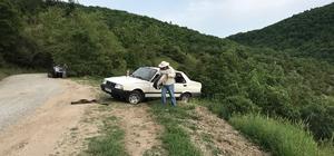 Çanakkale'de takla atan otomobildeki arılar yola saçıldı Arılar, yardıma gelen vatandaşlara da zor anlar yaşattı