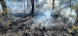 Kısıtlamada mangal yakan 3 kafadar 5 hektar ormanı kül etti