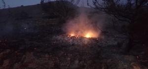 Datça'da makilik alanda yangın
