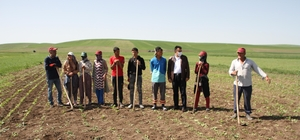 Kısıtlamadan muaf olan çiftçiler bayramı tarlada geçirdi