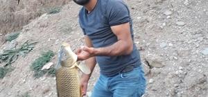 Balık tutarken elektrik akımına kapılan kişi hayatını kaybetti