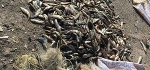 Kaçak avlanmanın cezası ağır oldu İnci kefali avcılarına 26 bin TL ceza uygulandı