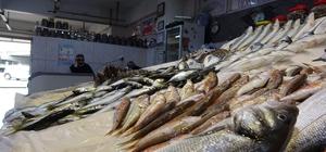 Bayram sonrası kıyı balıkçıları da balıkçı esnafının derdine derman olmadı Normalleşmenin ilk gününde Trabzon'da balıkçı esnafı umduğunu bulamadı