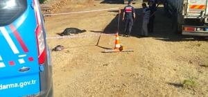 Seydikemer'de kamyonun çarptığı işçi öldü