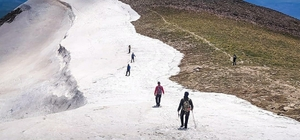 Bingöl'de doğa gezisi, 2900 rakımlı Sülbüs'e çıktılar