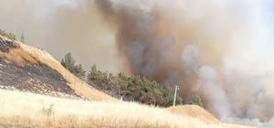 Mayınlı bölgede çıkan yangın korkuttu Türkiye Suriye sınırında yükselen dumanlar her iki ülkede paniğe neden oldu