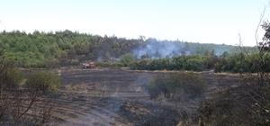 Ormanlık alanda çıkan yangın 10 dönüm arpa ekili alanı küle çevirdi Yerleşim yerleri yakınında çıkan yangın güçlükle kontrol altına alındı