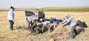 Viranşehir'de ilk arkeolojik kazı çalışması başladı İlçenin binlerce yıllık tarihi gün yüzüne çıkarılıyor