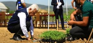 Ata tohumları toprakla buluştu 2 yıl önce hayata geçirilen 'Akıllı Tarım Çiftliği'nde toprakla buluşacak 27 bin 500 adet yerel tohum fidesinin ilk dikimini Muğla Büyükşehir Belediye Başkanı Dr. Osman Gürün yaptı.