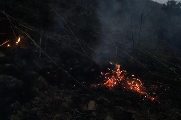 Elazığ'da yıldırım yangına neden oldu